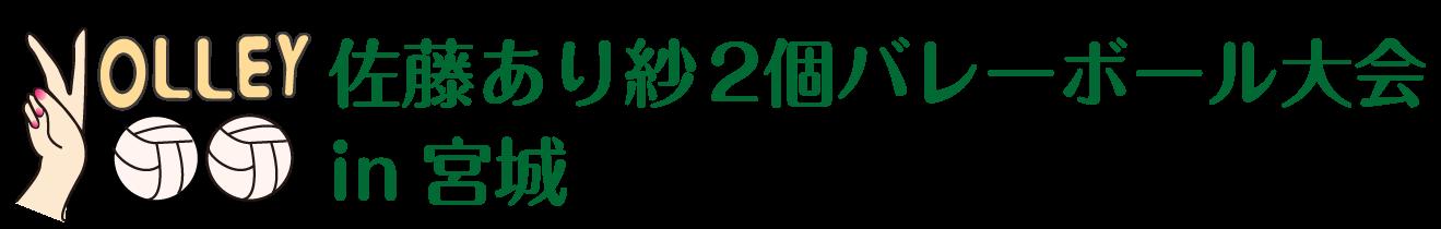 2個バレーボール大会in宮城